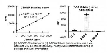 Glucose Uptake Fluorometric Assay Kit