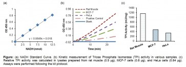 Triose Phosphate Isomerase (TPI) Activity Colorimetric Assay Kit