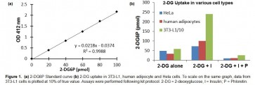 Glucose Uptake Colorimetric Assay Kit