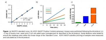 Isopropanol Dehydrogenase Activity Assay Kit (Colorimetric)