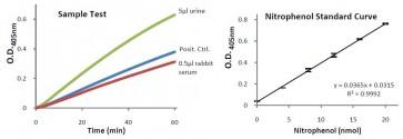 Amylase Activity Colorimetric Assay Kit