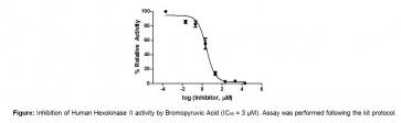 Human Hexokinase (HK) Inhibitor Screening Kit (Colorimetric)