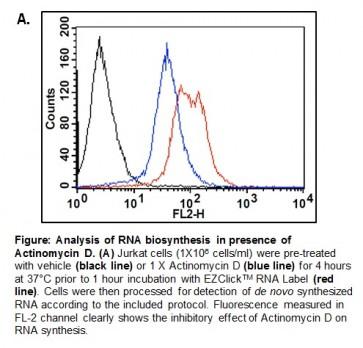 EZClick™ Global RNA Synthesis Assay Kit (FACS/Microscopy), Red Fluorescence