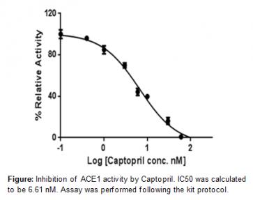 ACE1 Inhibitor Screening Kit (Colorimetric)