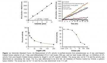Lipoprotein Lipase Activity Fluorometric Assay Kit