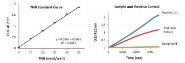 Lipase Activity Colorimetric Assay Kit II