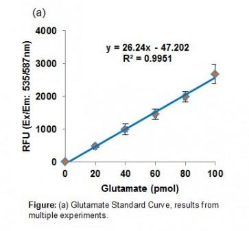 PicoProbe™ Glutamate Carboxypeptidase II Activity Assay Kit