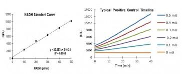 PicoProbe™ Aldehyde Dehydrogenase Activity Fluorometric Assay Kit