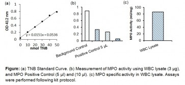 Myeloperoxidase (MPO) Colorimetric Activity Assay Kit