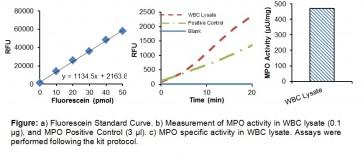 Myeloperoxidase (MPO) Fluorometric Activity Assay Kit
