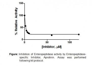 Enteropeptidase/Enterokinase Inhibitor Screening Kit (Fluorometric)