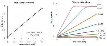 Glutathione Reductase Activity Colorimetric Assay Kit