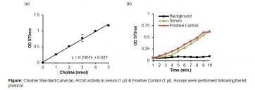 Acetylcholinesterase Activity Colorimetric Assay Kit