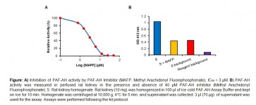 PAF Acetylhydrolase (PAF-AH) Inhibitor Screening Kit (Colorimetric)