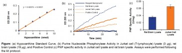 Purine Nucleoside Phosphorylase Activity Assay Kit (Colorimetric)