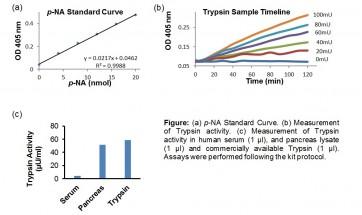 Trypsin Activity Colorimetric Assay Kit