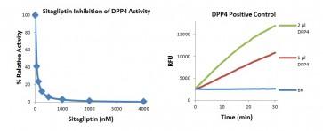 DPP4 Inhibitor Screening Kit (Fluorometric)
