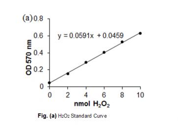 Glucose Oxidase Activity Colorimetric/Fluorometric Assay Kit