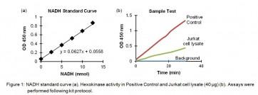 Hexokinase Colorimetric Assay Kit