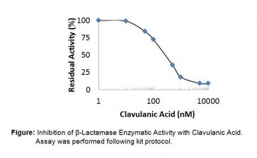 Beta-Lactamase Inhibitor Screening Kit (Colorimetric)