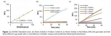 Rat Renin Activity Fluorometric Assay Kit