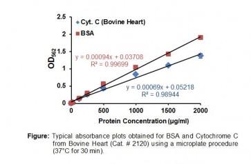 BCA Protein Assay Kit II