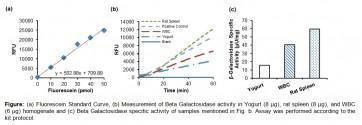 Beta Galactosidase (β-Gal) Activity Assay Kit (Fluorometric)
