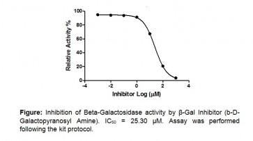 Beta Galactosidase (β-Gal) Inhibitor Screening Kit (Fluorometric)