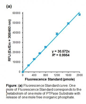 Protein Tyrosine Phosphatase Activity Assay Kit (Fluorometric)