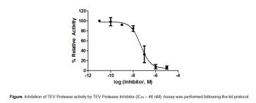 TEV Protease Inhibitor Screening Kit (Fluorometric)