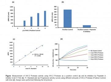 HIV-2 Protease Activity Assay Kit (Fluorometric)