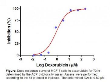 Acid Phosphatase Cell Cytotoxicity Assay Kit