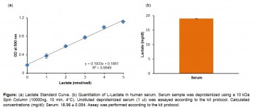 EZScreen™ Lactate Colorimetric Assay Kit (384 Well)