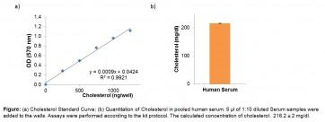 EZScreen™ Total Cholesterol & Cholesteryl Ester Colorimetric Assay Kit (384-Well)