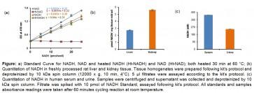 EZScreen™ NAD+/NADH Colorimetric Assay Kit (384-well)