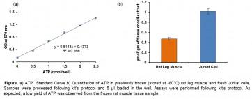 EZScreen™ ATP Colorimetric Assay Kit (384-well)