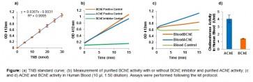 Cholinesterase Activity Assay Kit (Colorimetric)