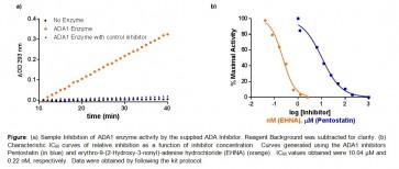 Adenosine Deaminase (ADA1) Inhibitor Screening Kit (Colorimetric)