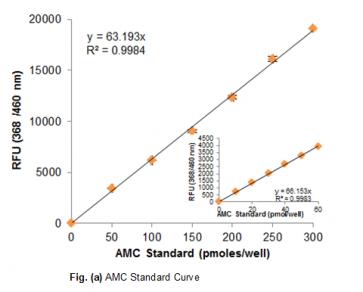 Cystathionine β-Synthase Activity Assay Kit (Fluorometric)