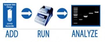 RobustReady™ PCR Mix-Dye