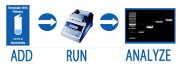 FireStart™ PCR Mix-Dye