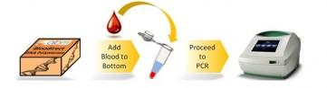 Whole Blood PCR Mix