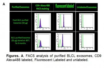 ExoStd™ B16F10 Fluorescent Exosome Standard