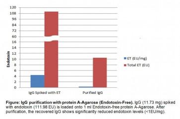 ToxOut™ Endotoxin-Free Protein A Agarose