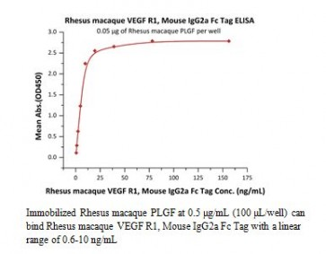 Human CellExp™ VEGF R1 /Flt-1, Rhesus macaque Recombinant