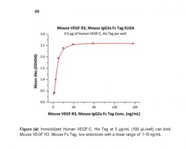 Human CellExp™ VEGF R3 / FLT4, Fc Tag, Mouse Recombinant