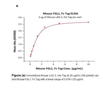 Human CellExp™ FGL1, Fc Tag, Mouse Recombinant