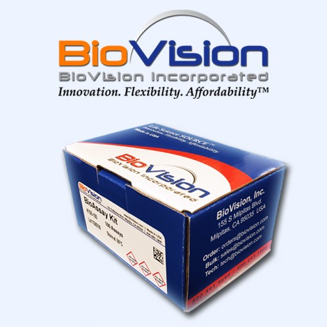 CaspGLOW™ Fluorescein Active Caspase-8 Staining Kit   K188