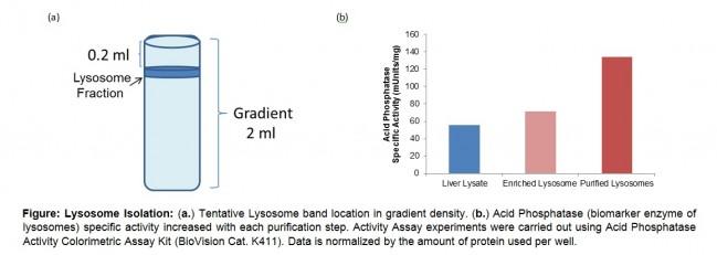 Lysosome Purification Kit K235 Biovision Inc