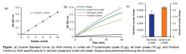 adenosine deaminase activity assay kit colorimetric k321